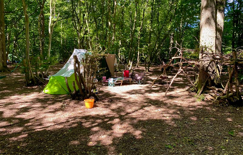 woodland sussex camping
